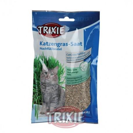 Hierba en bandeja para gatos
