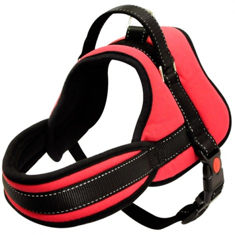 Arnés deportivo Max 8 para perros