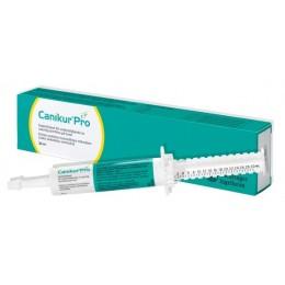 Canikur Pro Pasta oral suplemento para la flora intestinal de los perros 15 ml.