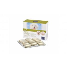 HYBRID Pastillas para lagrimales y salivales 60 comprimidos