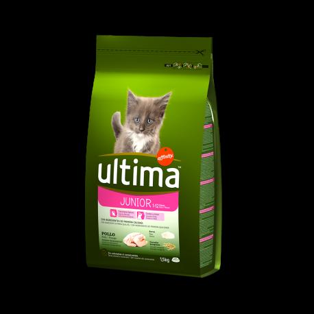 Ultima cat Junior
