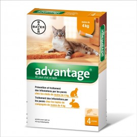 Advantage 40 Pipetas para gatos de 0 a 4 kg.