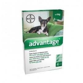 Advantage pipetas para perros 0-4 kg. 4 ud.