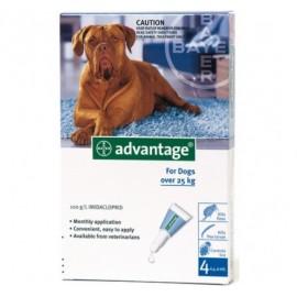 Advantage pipetas para perros +25kg. 4 ud.