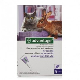 Advantage 80 Pipetas para gatos de más de 4 kg.