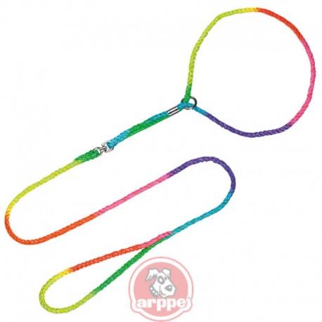 Collar correa de exposición multicolor