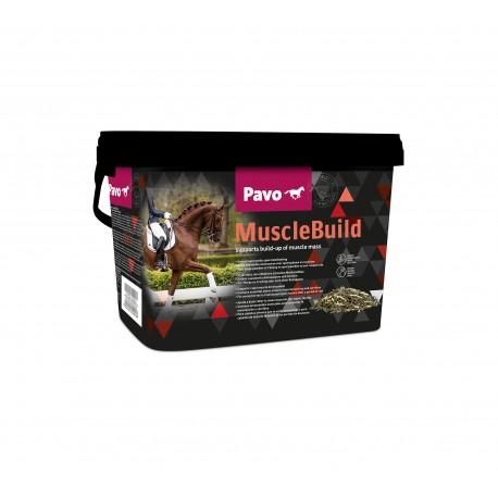 Pavo MuscleBuild complemento para el desarrollo muscular del caballo 3 kg.
