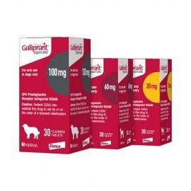 Galliprant 100 mg. 30 comp.