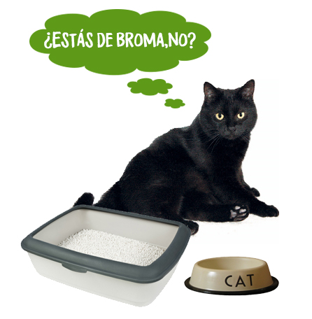 la bandeja del gato