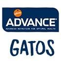ADVANCE GATOS