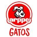 ARPPE Gatos